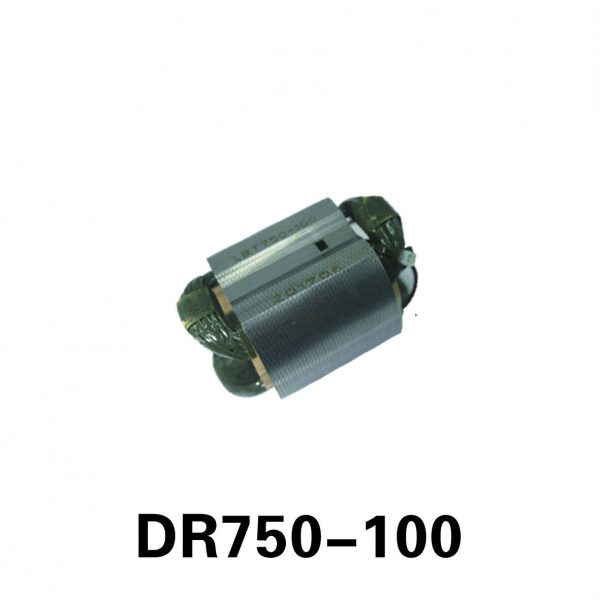 DR750-100-S